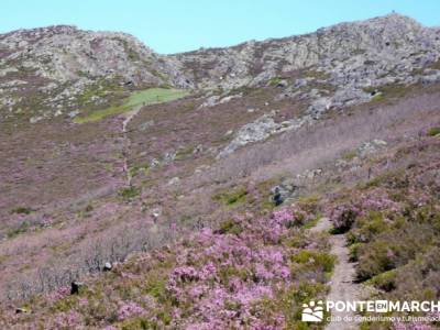Senderismo Segovia - Macizo de la Buitrera; agencias de viajes diferentes